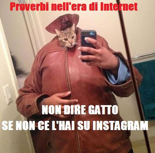 Proverbi Internet